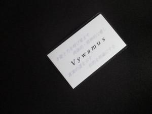 ヴァイワームス(Vywamus)マスター 守護カード