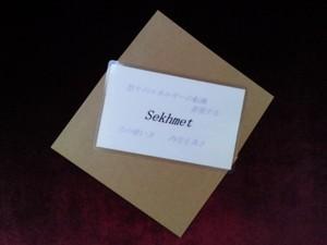 Sekhmet(セクメト)女神様 守護カード
